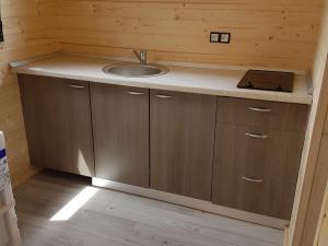Photo Cuisine aménagée et équipée (évier, plaques vitrocéramique, Frigider 90 litres, et meubles)